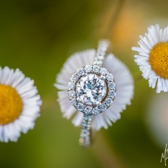 Engagement ring balancing on delicate flowers
