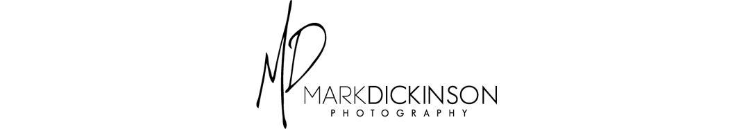 Mark Dickinson | Central Florida Photographer Serving Daytona Beach, Orlando, Lake Mary areas logo